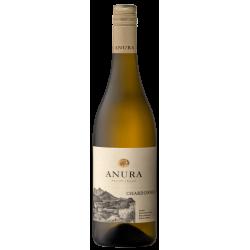 Buy Anura Chardonnay 2019 • Order Wine
